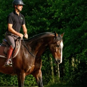 Slider relation homme-cheval Haras de la Cense
